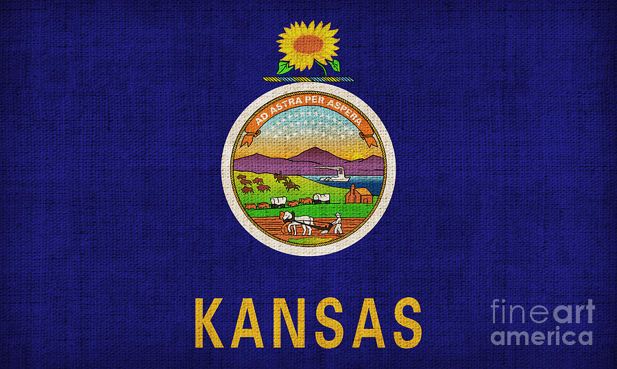 Kansas State Flag Painting