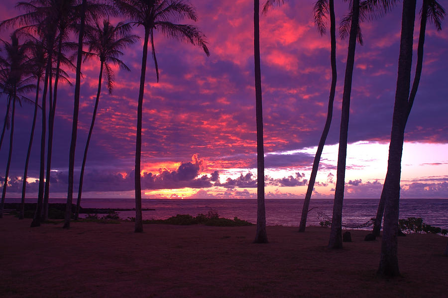 Kapaa Kauai Sunrise Photograph