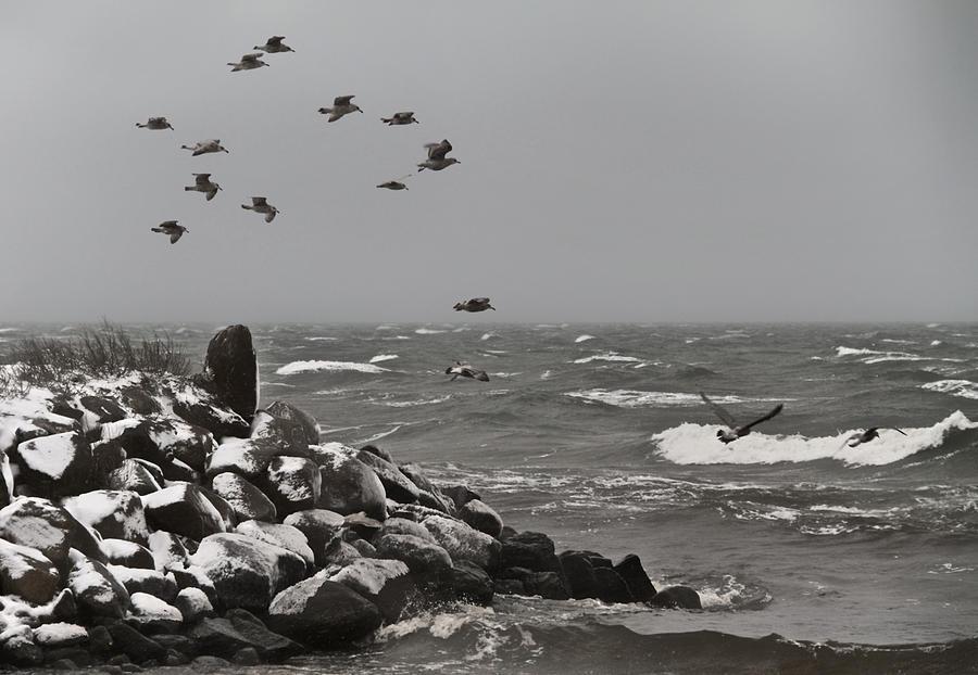 Kattegat Photograph