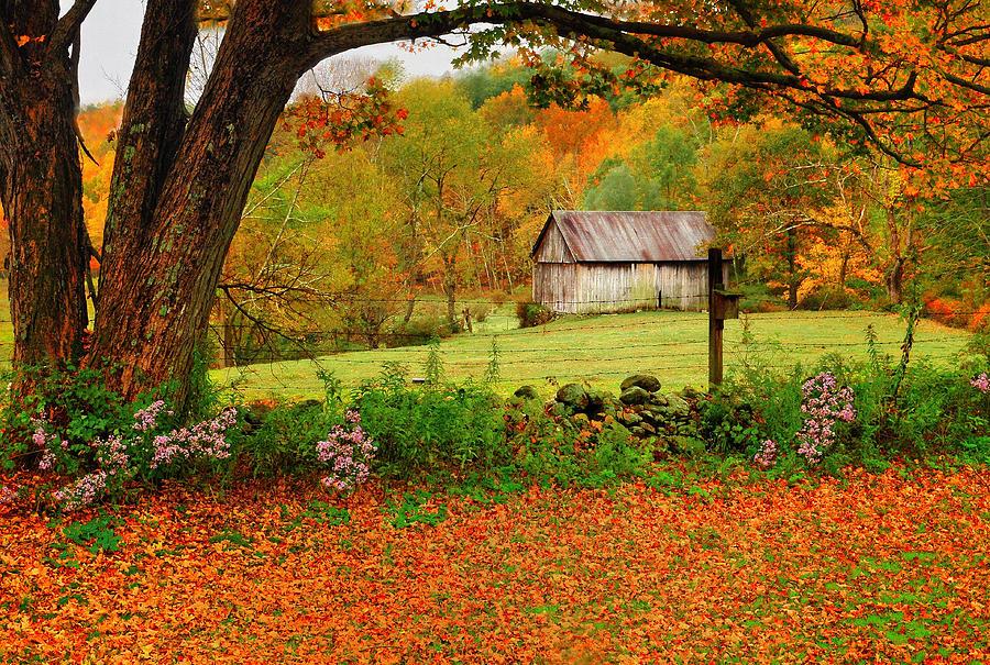 beautiful fall scenic view - photo #22