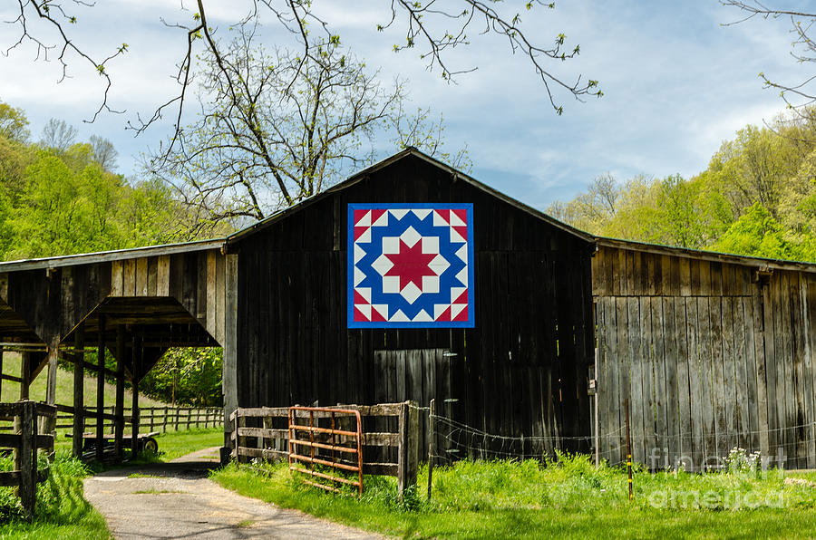 Quilt Patterns On Barns In Ky : Kentucky Barn Quilt - Carpenters Wheel Photograph by Mary Carol Story