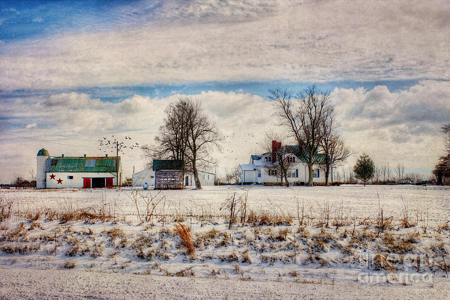 Hdr Photograph - Kentucky Snow Day by Darren Fisher