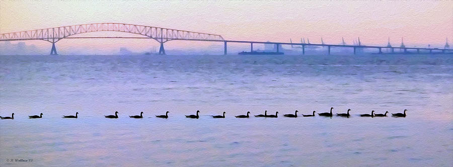 2d Photograph - Key Bridge And Waterfowl by Brian Wallace