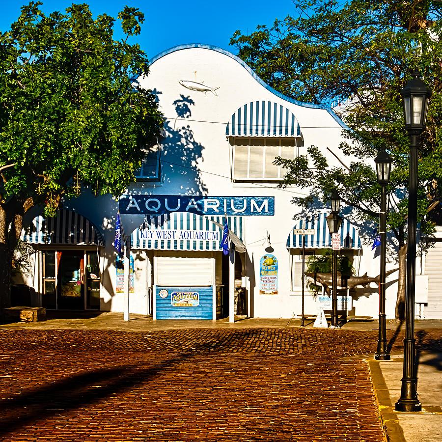 Key West Aquarium Photograph By Vaughn Garner