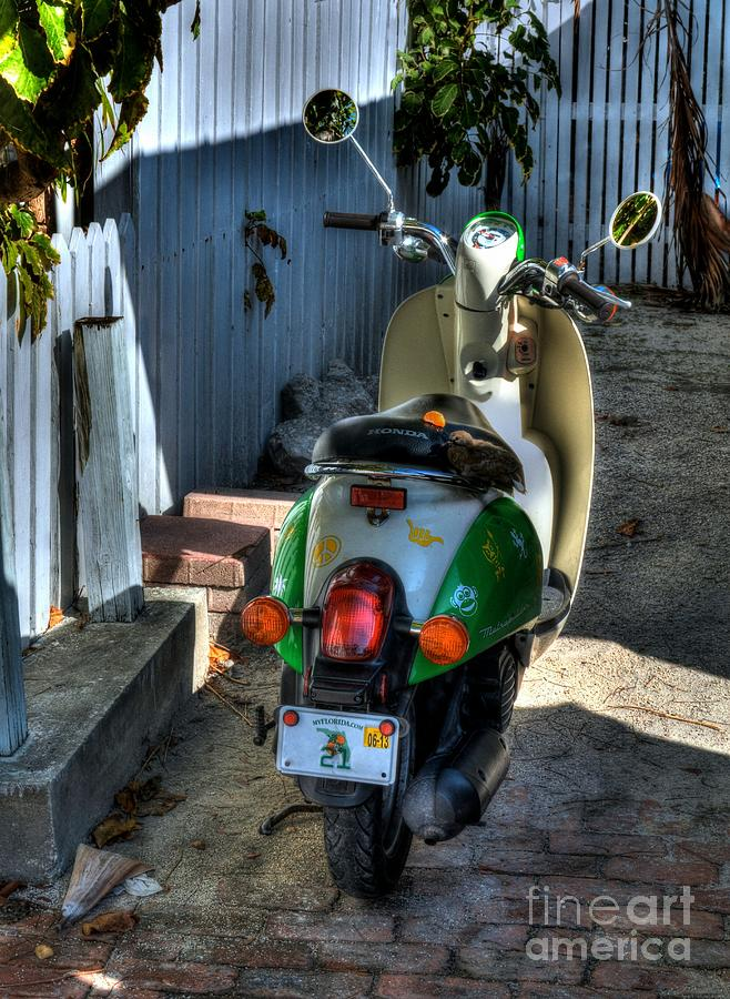 Scooters Photograph - Key West Scooter by Mel Steinhauer