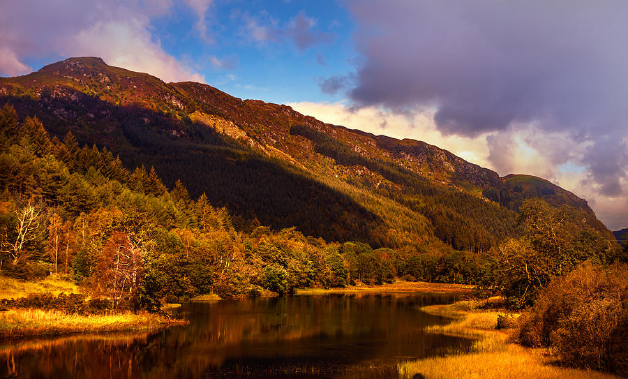 Scotland Photograph - Kingdom Of Nature. Scotland by Jenny Rainbow