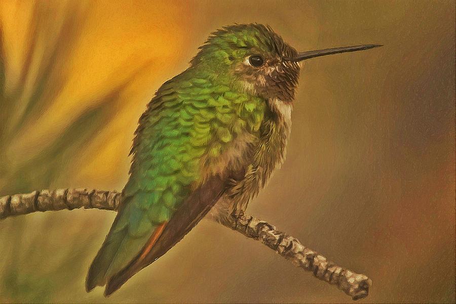 Kingfisher 1 Painting