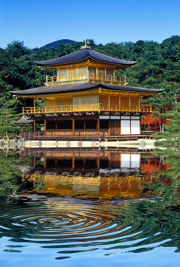Kinkakuji Gold Pavilion Reflection Photograph  - Kinkakuji Gold Pavilion Reflection Fine Art Print