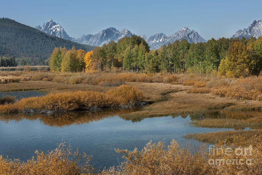 Kiss Of Fall In The Grand Tetons Photograph