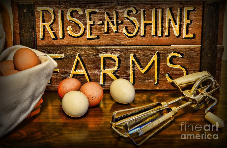 Kitchen  Rise And Shine Photograph