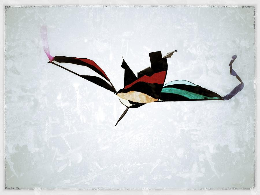 Kite Photograph  - Kite Fine Art Print