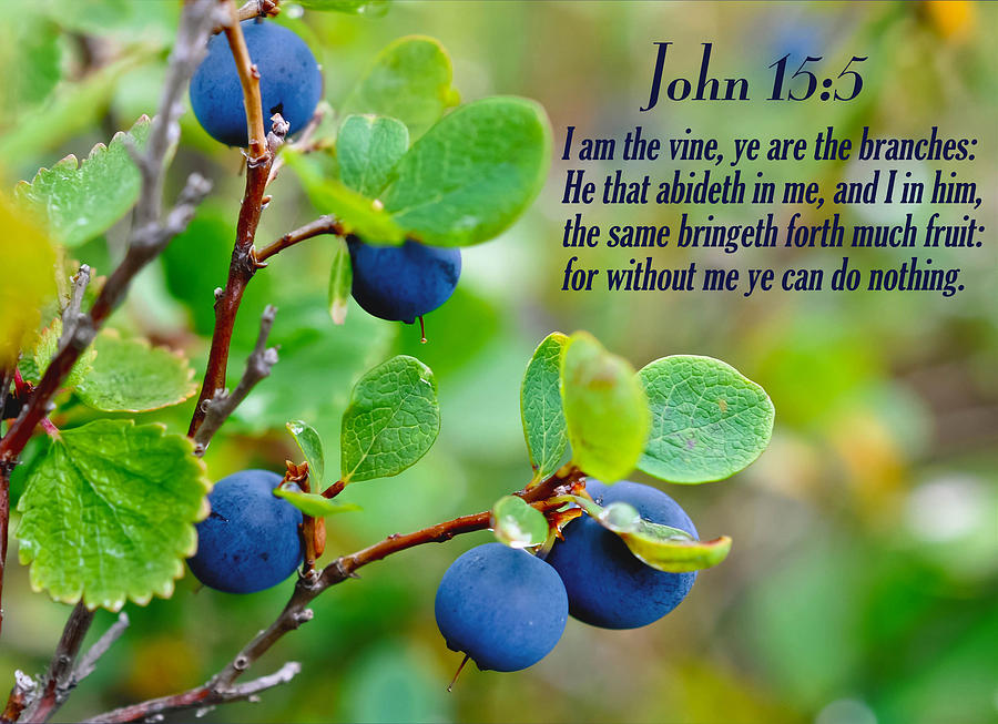 Image result for Friend of God kjv John 15:15