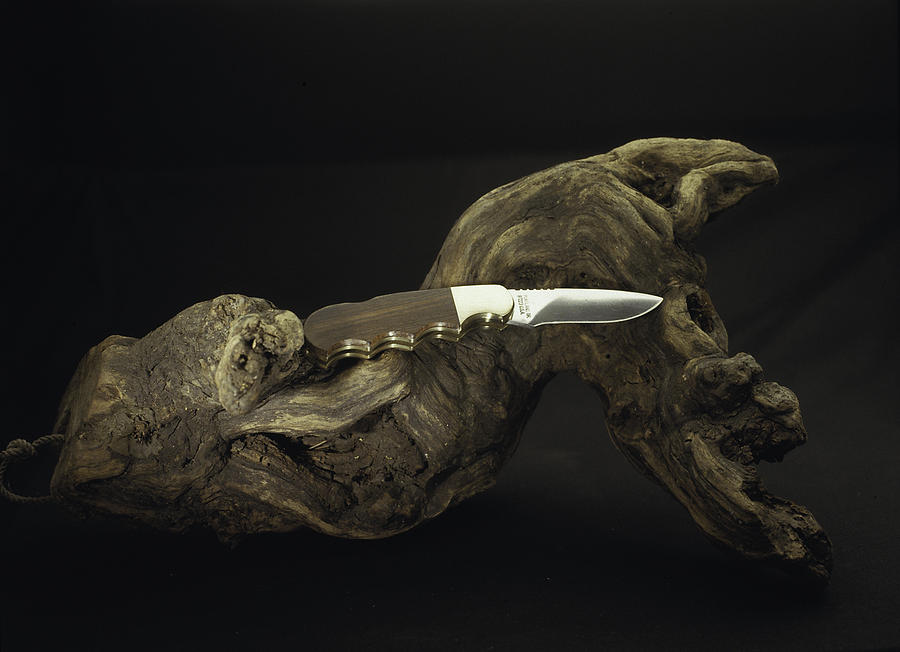 Knife Photograph  - Knife Fine Art Print