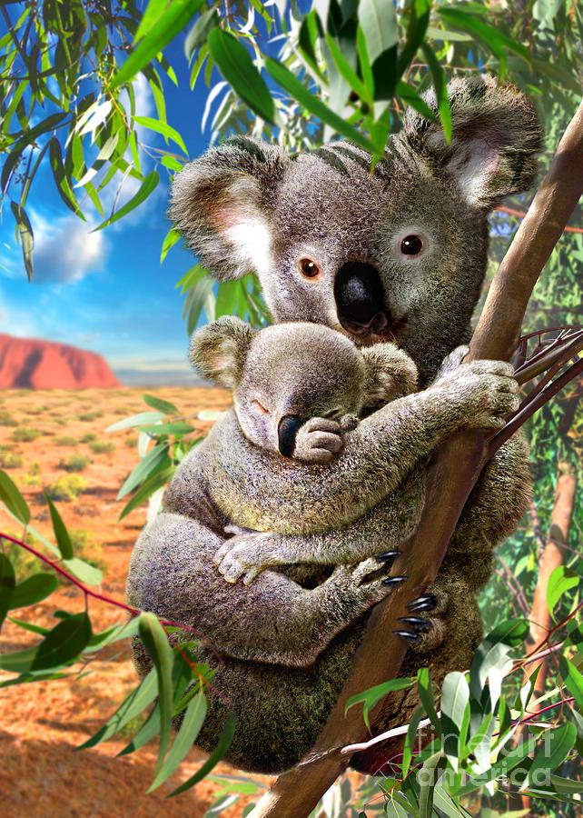 Koala And Cub Digital Art