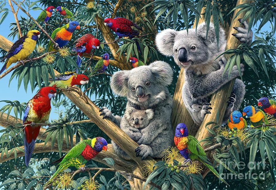 Koala Outback Digital Art By Steve Read