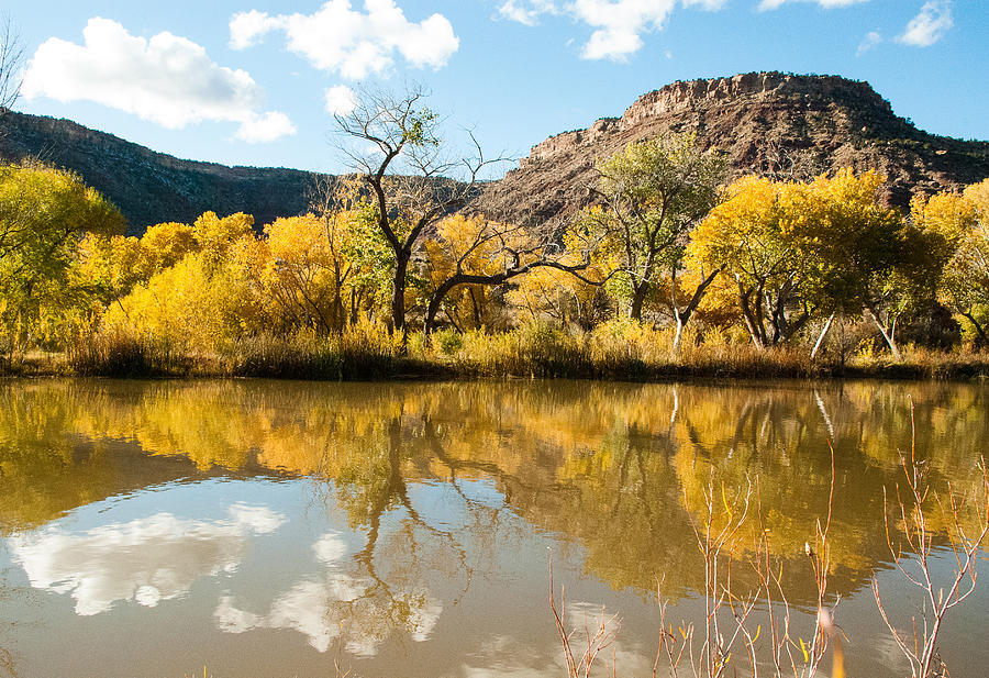 Kolob Pond In Fall Zion National Park Utah Photograph