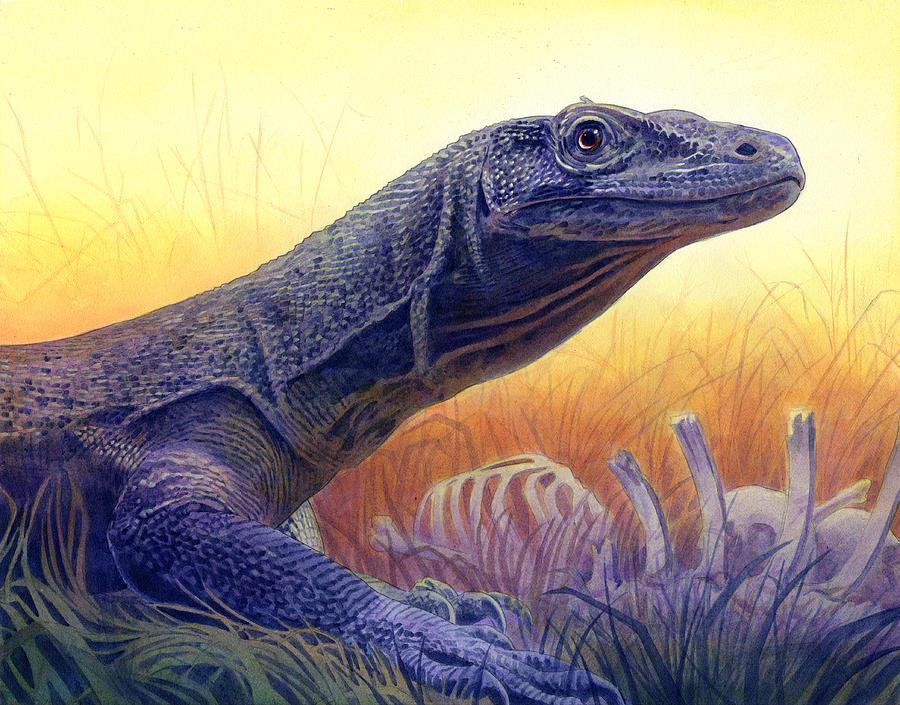 Komodo Dragon Painting