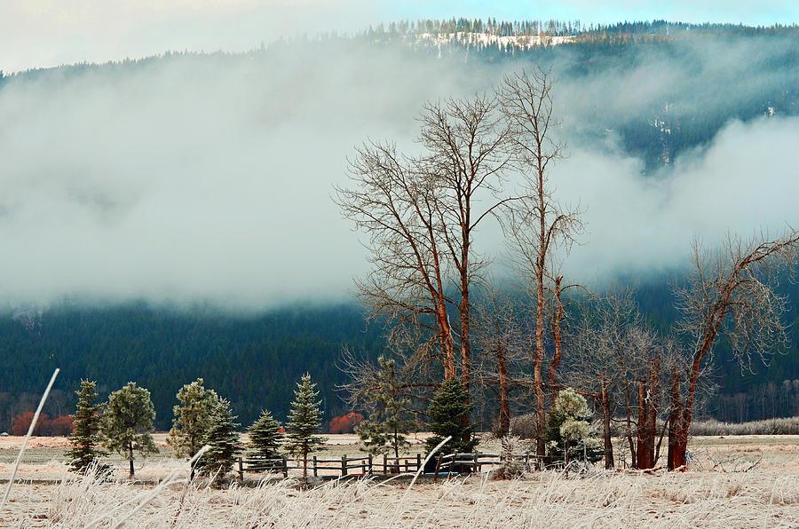 Landscape Photograph - Kootenai Frost by Annie Pflueger