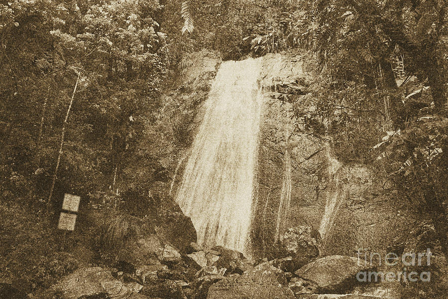 La Coca Falls El Yunque National Rainforest Puerto Rico Print Vintage Digital Art