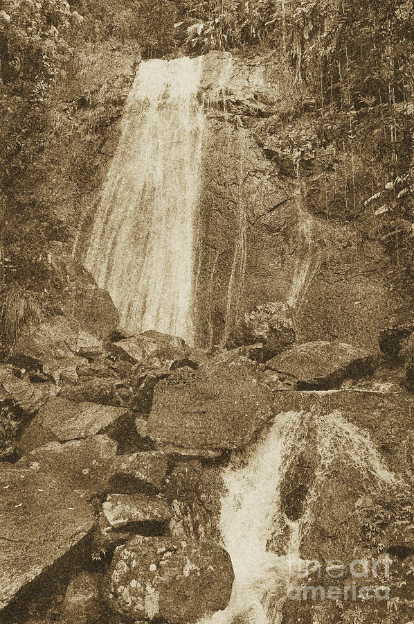 La Coca Falls El Yunque National Rainforest Puerto Rico Prints Vintage Digital Art  - La Coca Falls El Yunque National Rainforest Puerto Rico Prints Vintage Fine Art Print