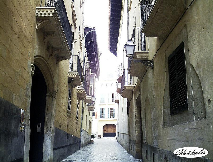 La Juderia De Palma-the Jewish Quarter Of Palma Photograph by Cibeles Gonzalez