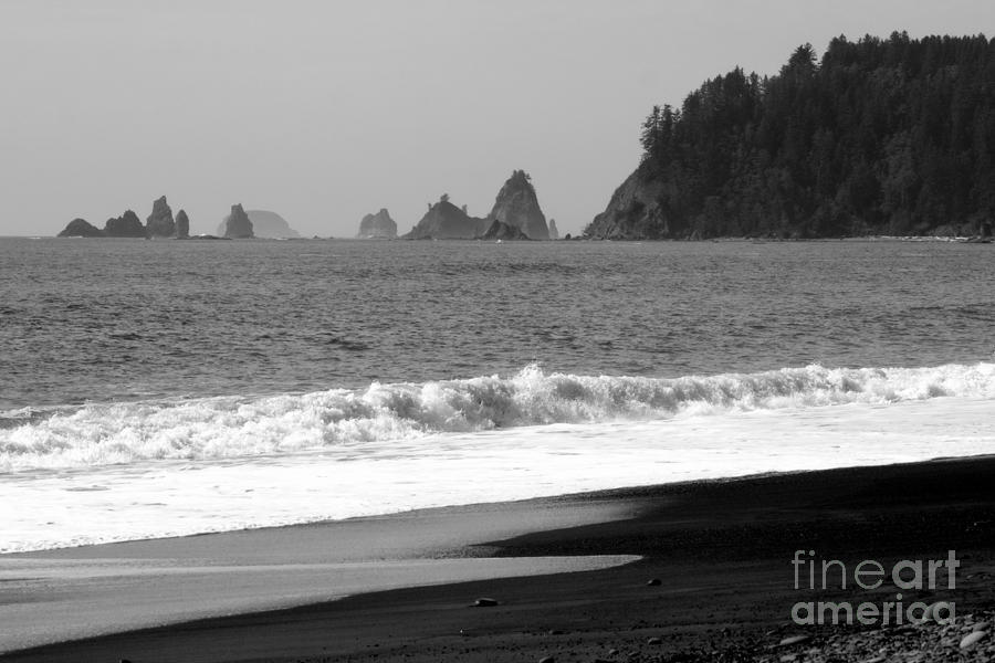 La Push Beach Black And White Photograph  - La Push Beach Black And White Fine Art Print