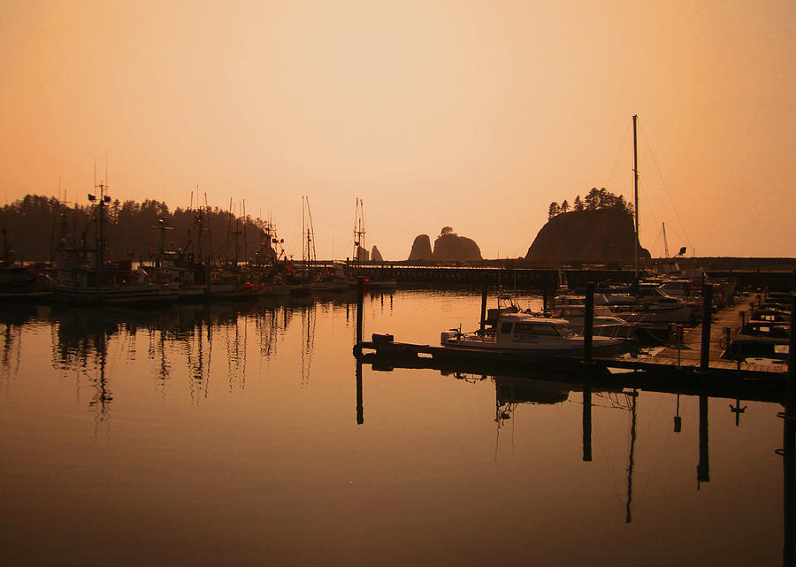 La Push In The Afternoon Photograph