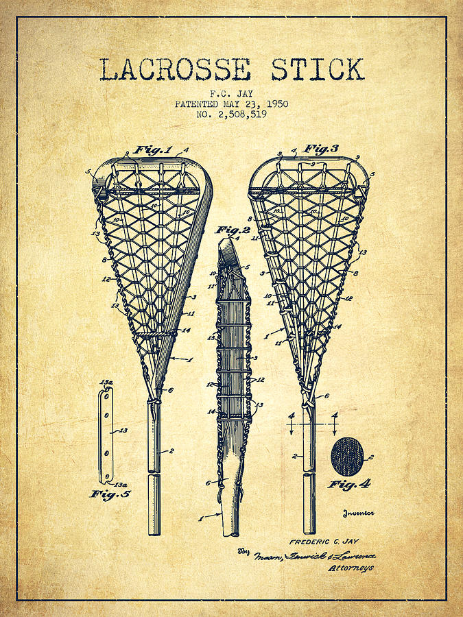 Lacrosse Stick Patent From 1950 Vintage Drawing By Aged Pixel