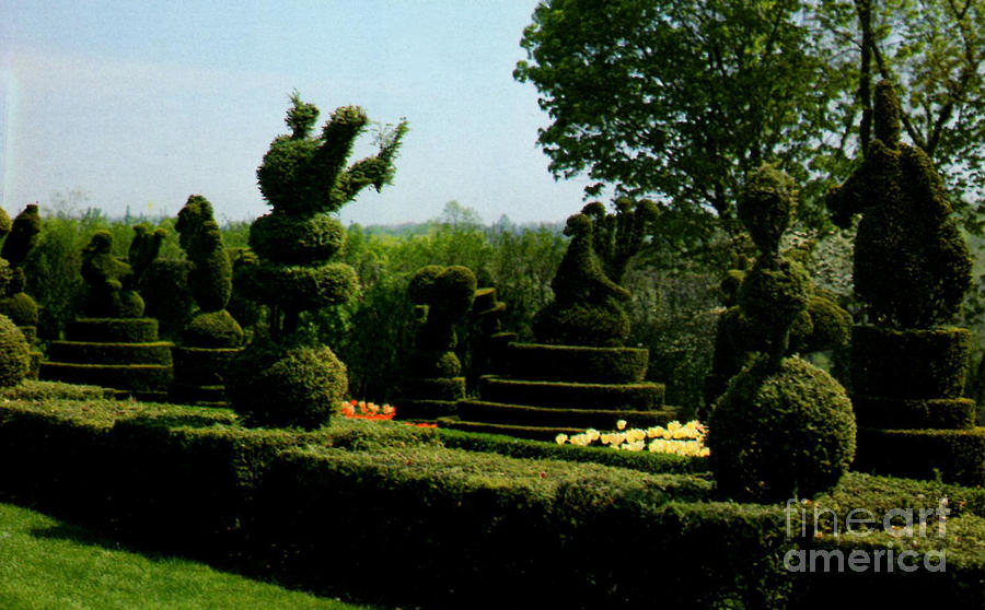 Ladew Topiary Gardens Photograph