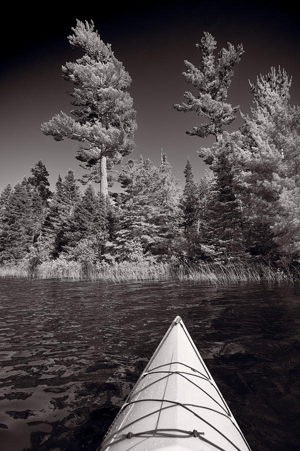 Kayak Photograph - Lake Kayaking Bw by Steve Gadomski