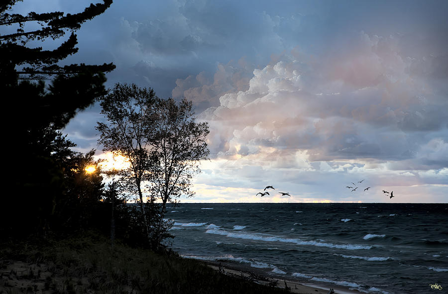 Lake superior whitefish point michigan photograph by evie for White fish point