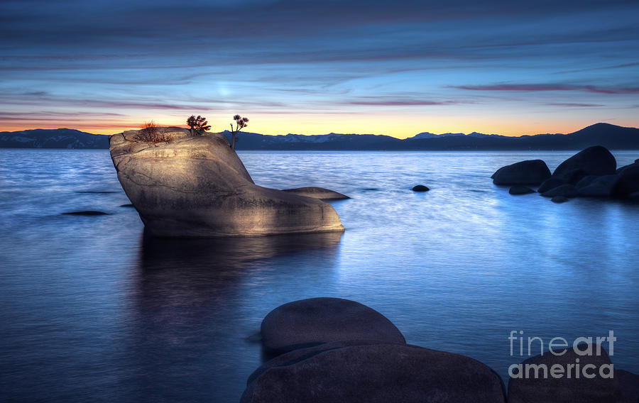 Lake Tahoe Bonsai Rock Photograph