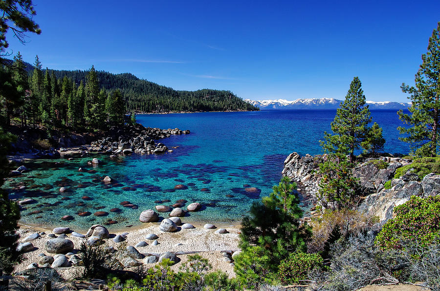 Blue Sky Photograph - Lake Tahoe Springscape by Scott McGuire