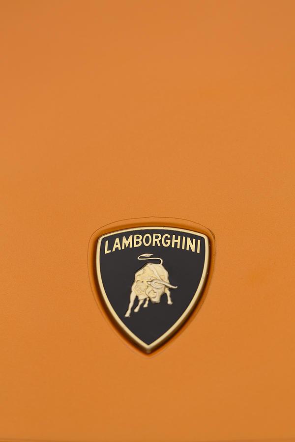 Lambo Hood Ornament Orange Photograph
