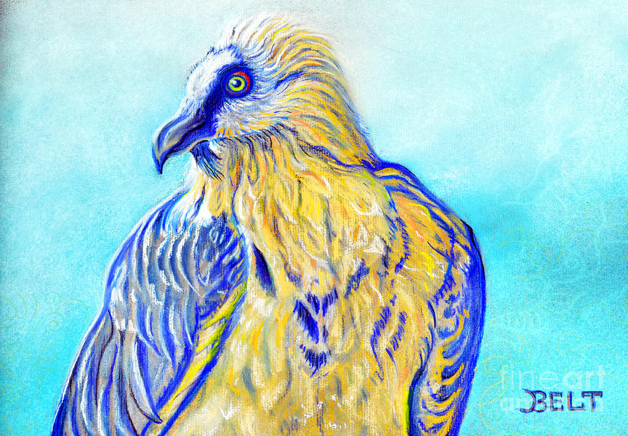 Lammergeier Vulture Pastel