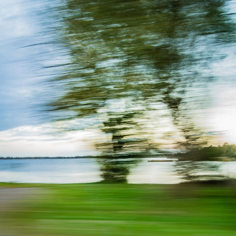 Landscape Becomes Art In Speedscape Of Tree In Front Of Lake In Blue Green And White Color Photograph