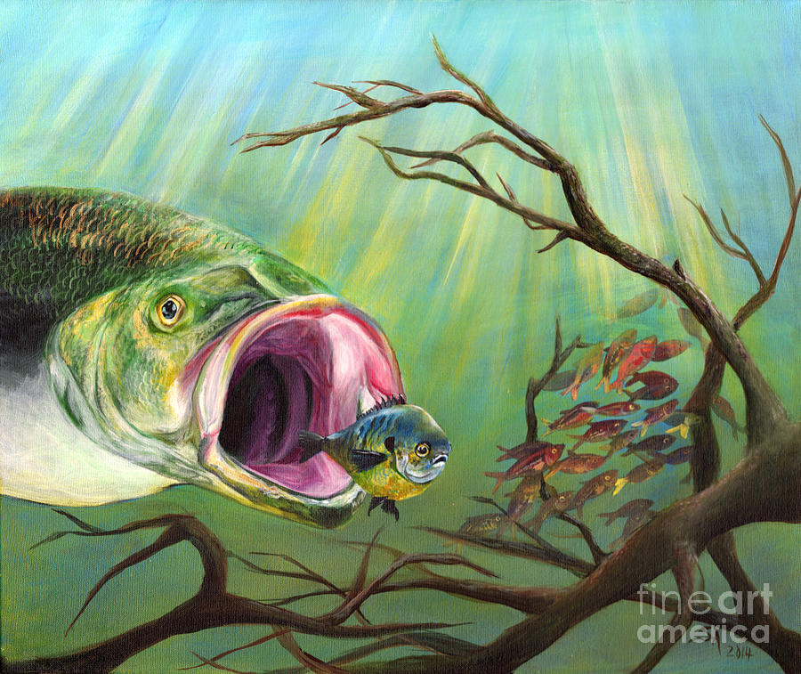 Large mouth bass and clueless fish painting by sonya barnes for Bass fish painting