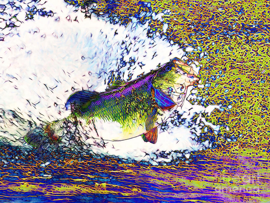 Largemouth Bass P68 Photograph  - Largemouth Bass P68 Fine Art Print
