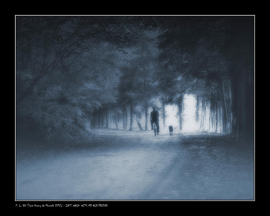 Last Walk With My Old Friend Photograph  - Last Walk With My Old Friend Fine Art Print