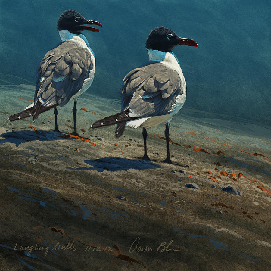 Laughing Gulls Digital Art  - Laughing Gulls Fine Art Print