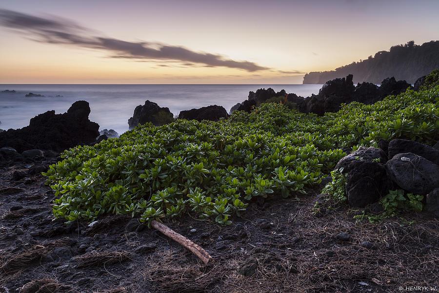 Laupahoehoe Sunrise Photograph