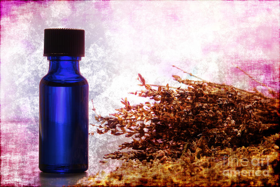 Aromatherapy Photograph - Lavender Essential Oil Bottle by Olivier Le Queinec
