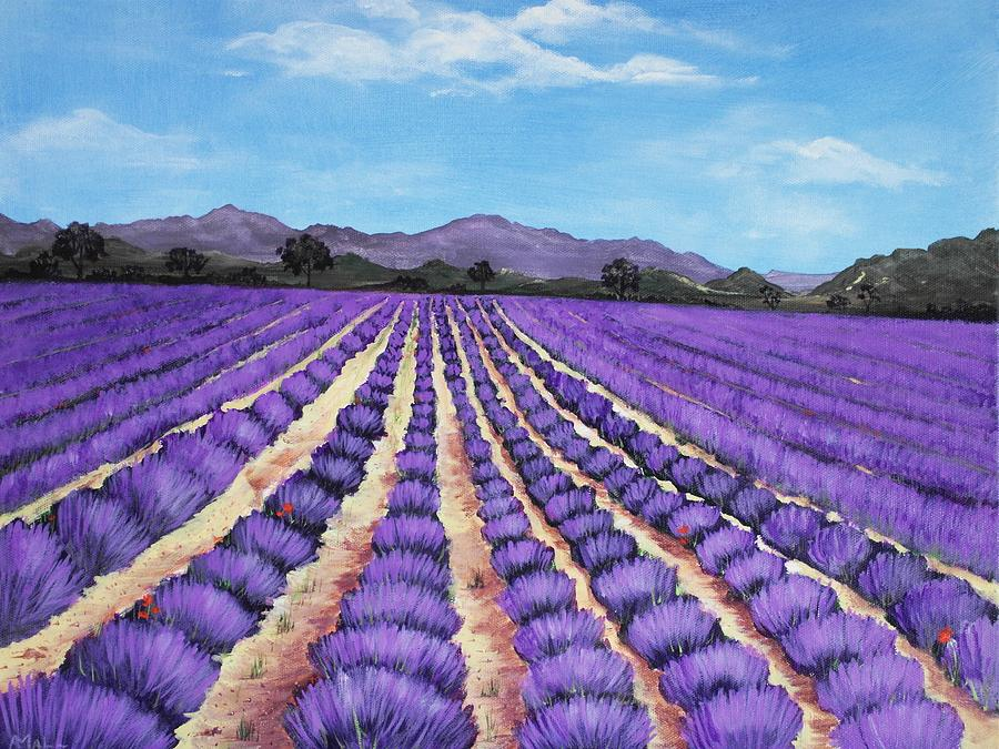 Lavender Field In Provence Painting  - Lavender Field In Provence Fine Art Print