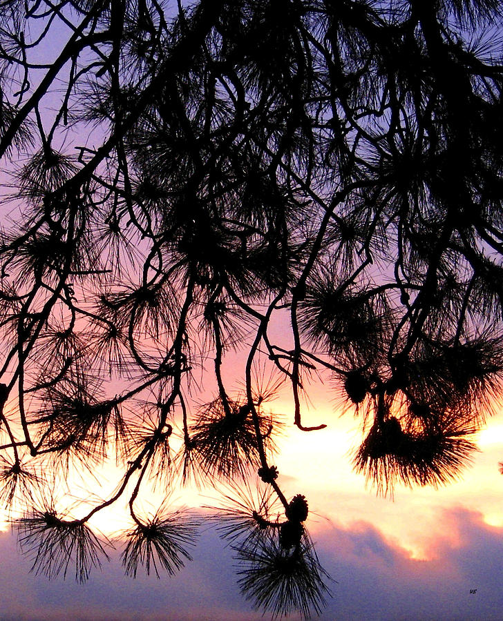 Lavender Sunset Painting Photograph - Lavender Sunset Painting by Will Borden