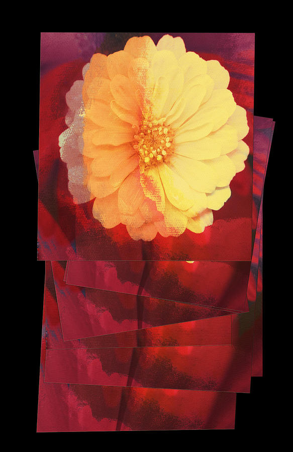 Flower Abstract Digital Art - Layers Of Yellow Flower by Susan Stone