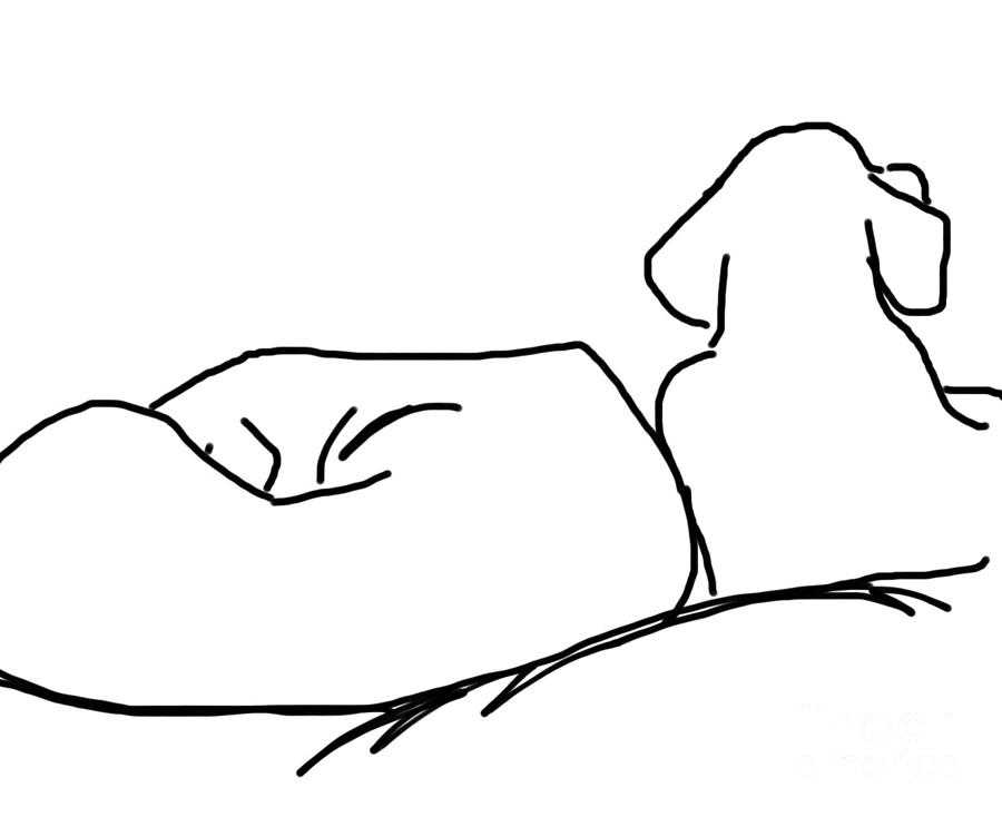 Lazy Labs Drawing