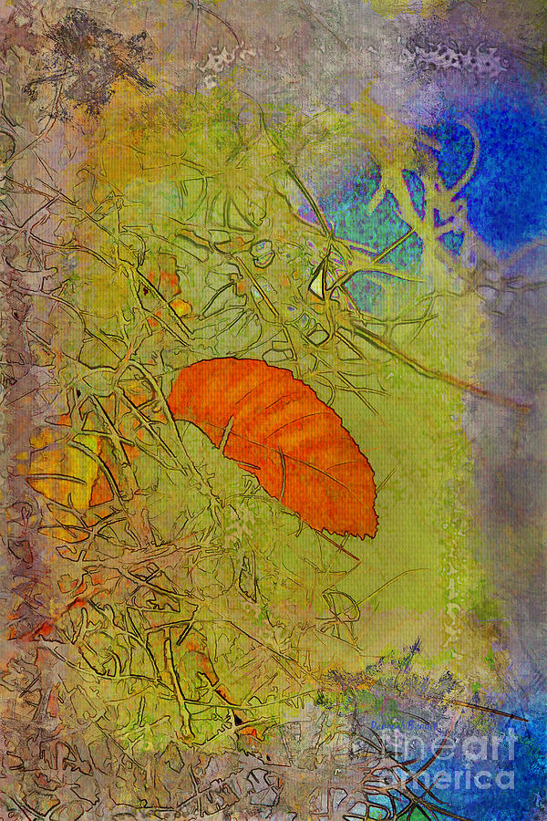 Leaf In The Moss Photograph  - Leaf In The Moss Fine Art Print