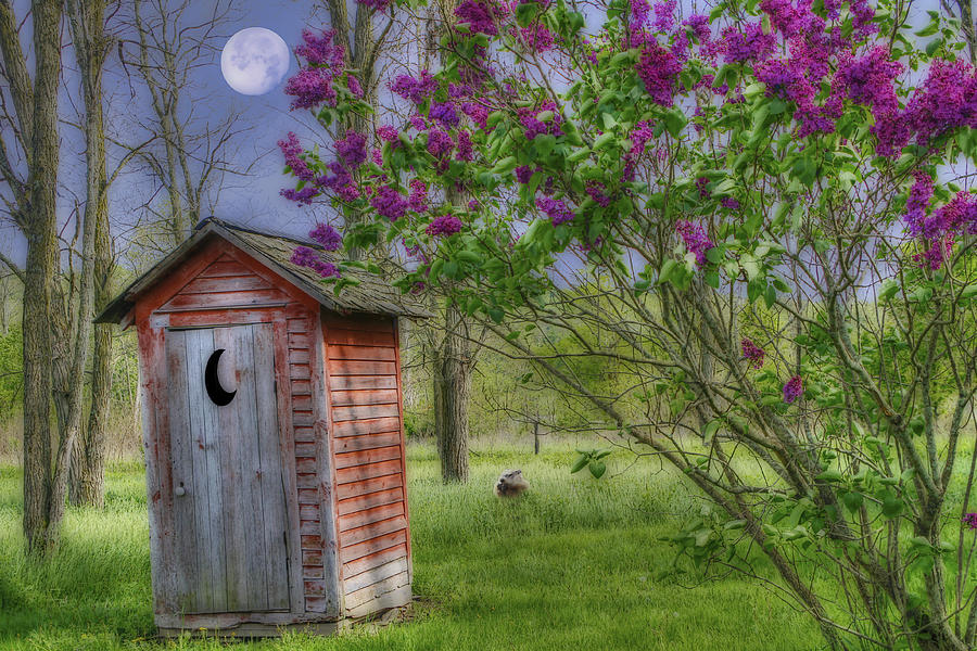 Leaning Outhouse Photograph