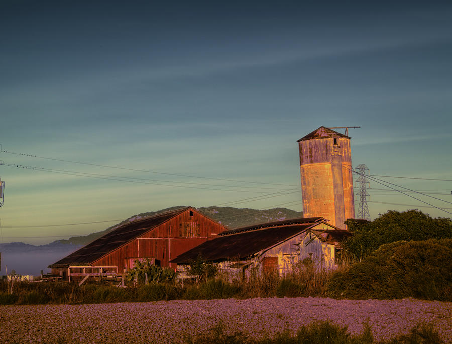 Petaluma Photograph - Leaning Silo  by Bill Gallagher