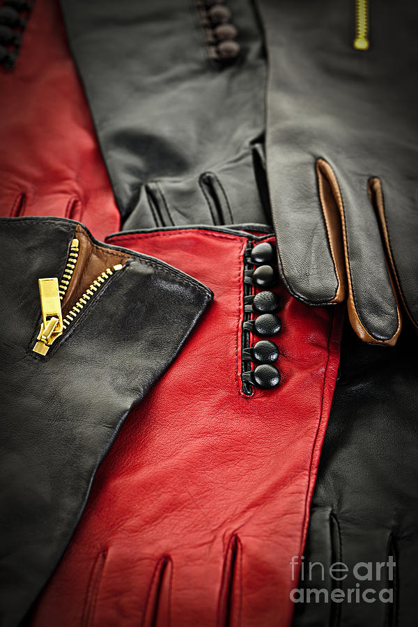 Leather Gloves Photograph